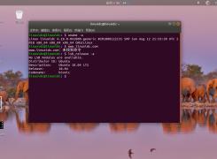 如何在Ubuntu, Linux Mint中安装Linux Kernel 4.18