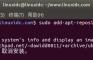 使用Neofetch在终端中显示Linux Ubuntu系统信息