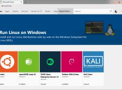 适用于 Linux 的 Windows 子系统安装指南 (Windows 10)