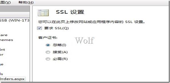简单教程:如何在 IIS 上部署 SSL