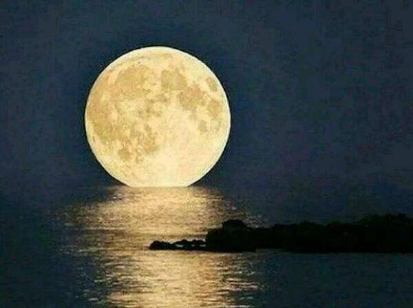 蓝月亮澎湃新闻的最新直播