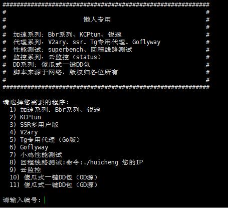 新版Linux综合工具箱带superbench 回程线路测试。