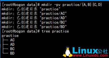 Linux常见文件管理命令解析