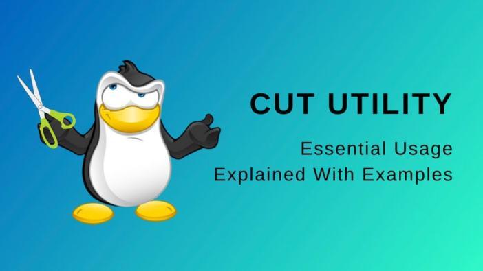 Linux 下 cut 命令的 4 个基础实用的示例
