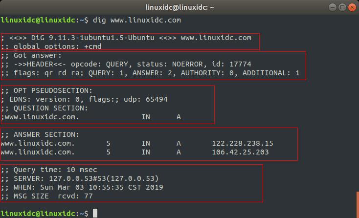 Linux dig 命令使用详解