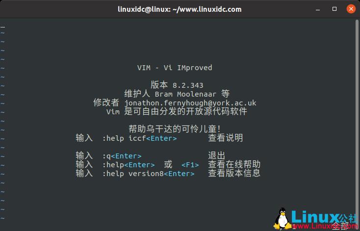 Ubuntu 18.04/20.04下安装Vim 8.2