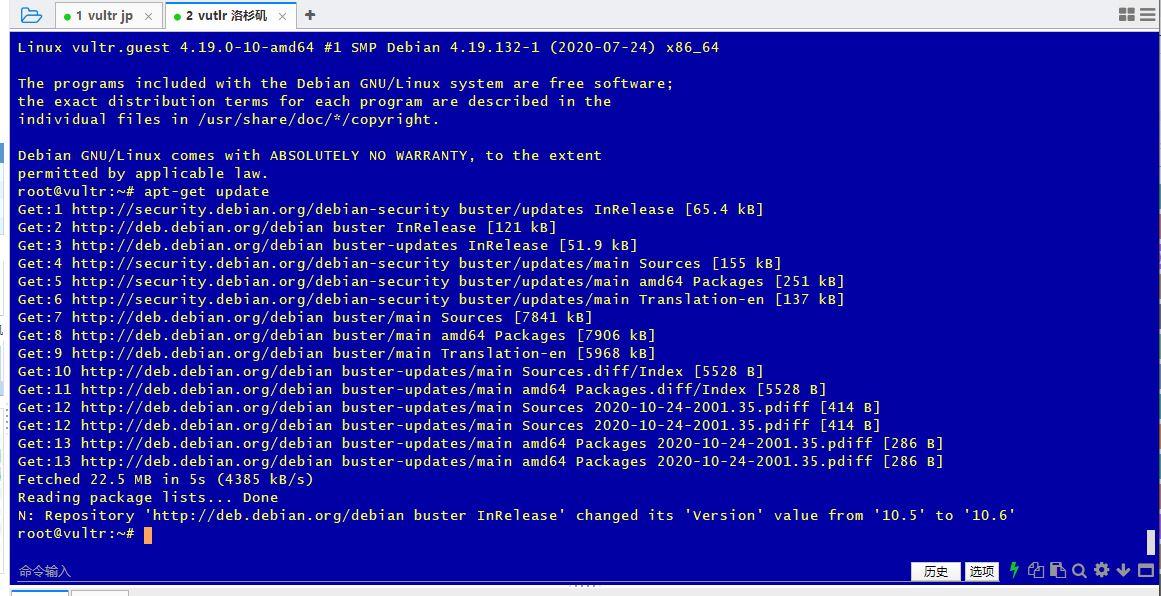 三条命令Vultr Debian系统DD Windows 2019